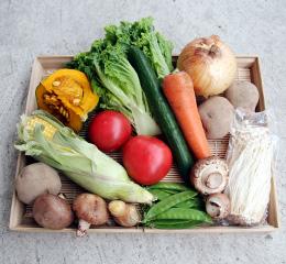 オーガニック野菜セットS